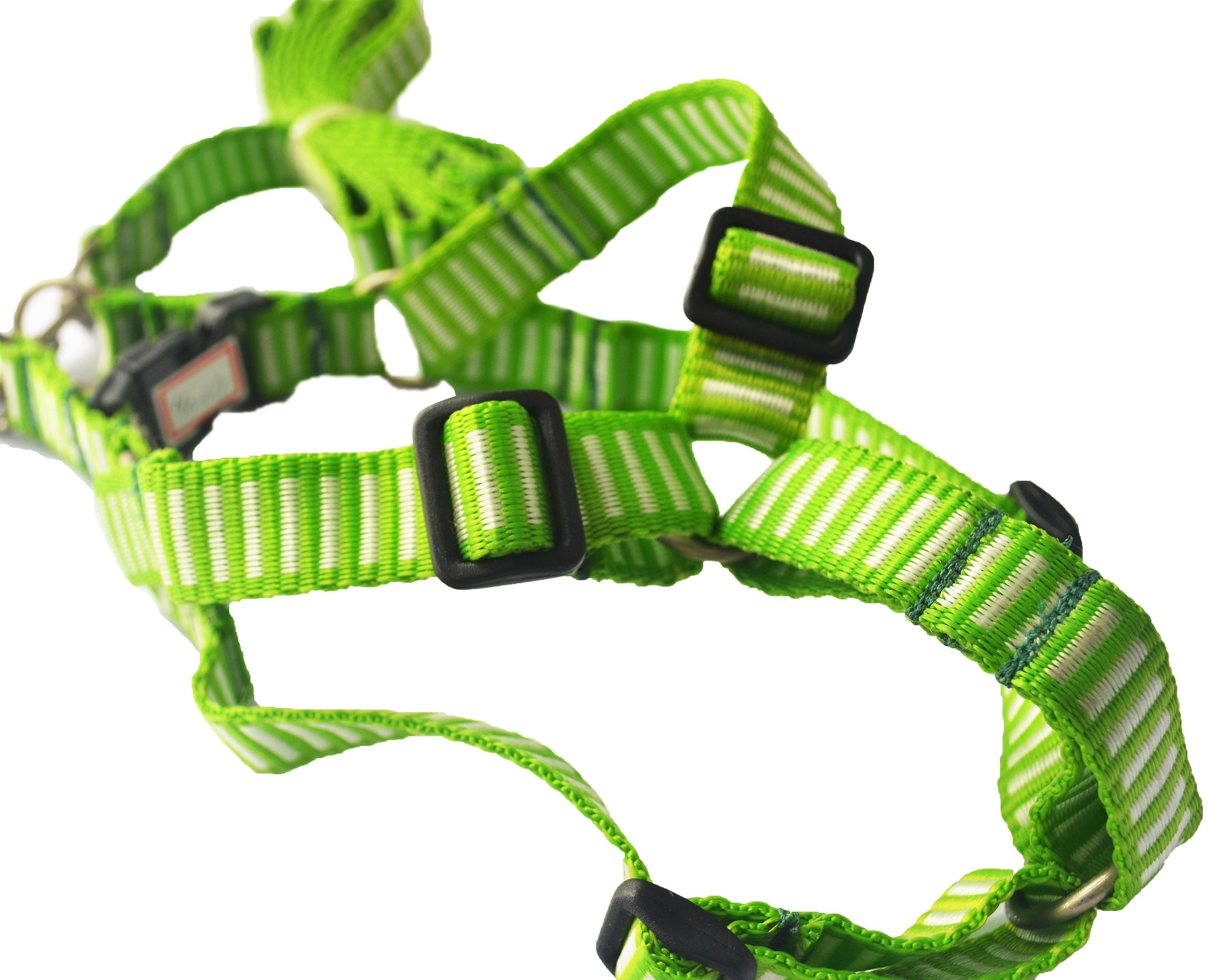 Peitoral ajustável com Guia green & white - mundodaspataspet.com.br