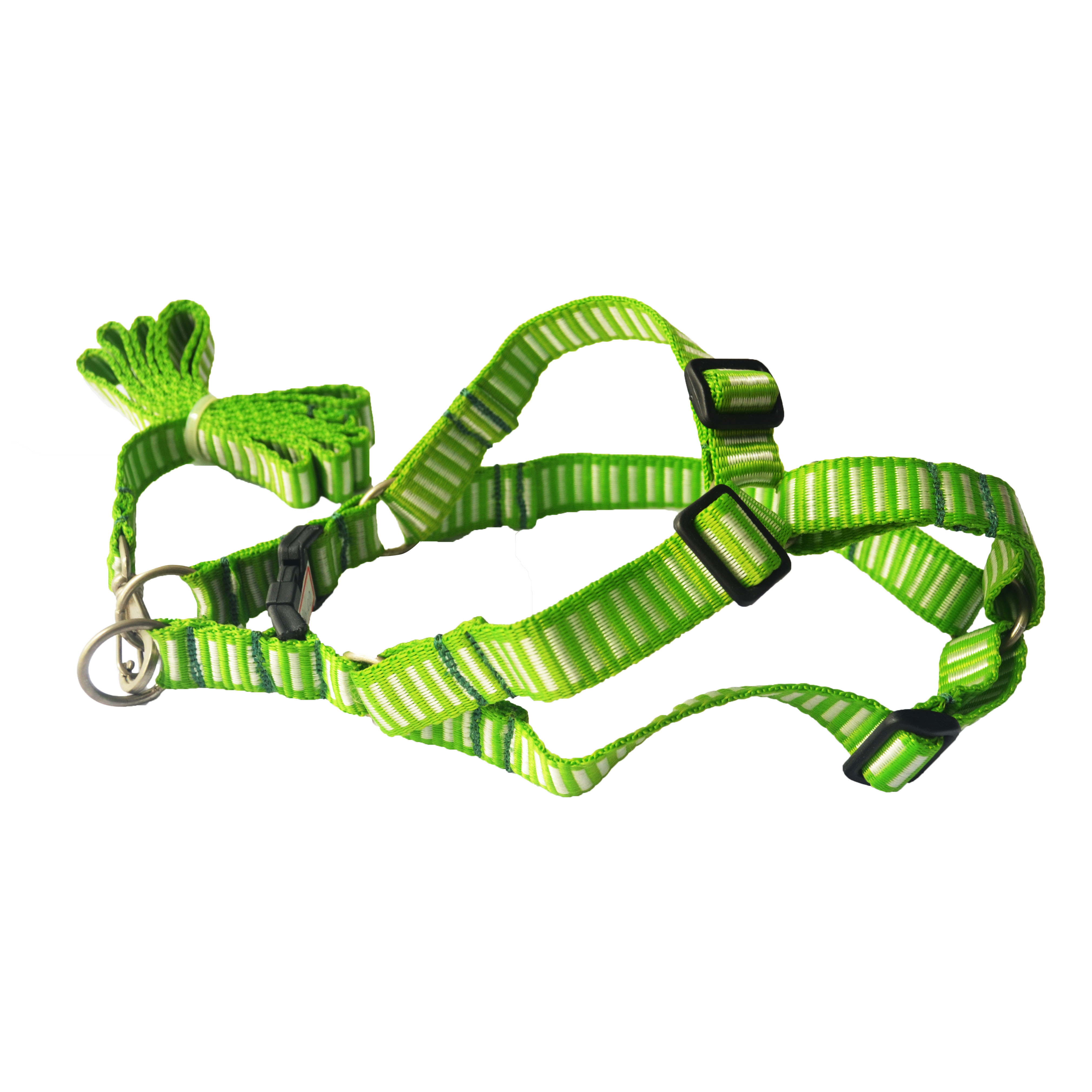 Peitoral ajustável com Guia green & white