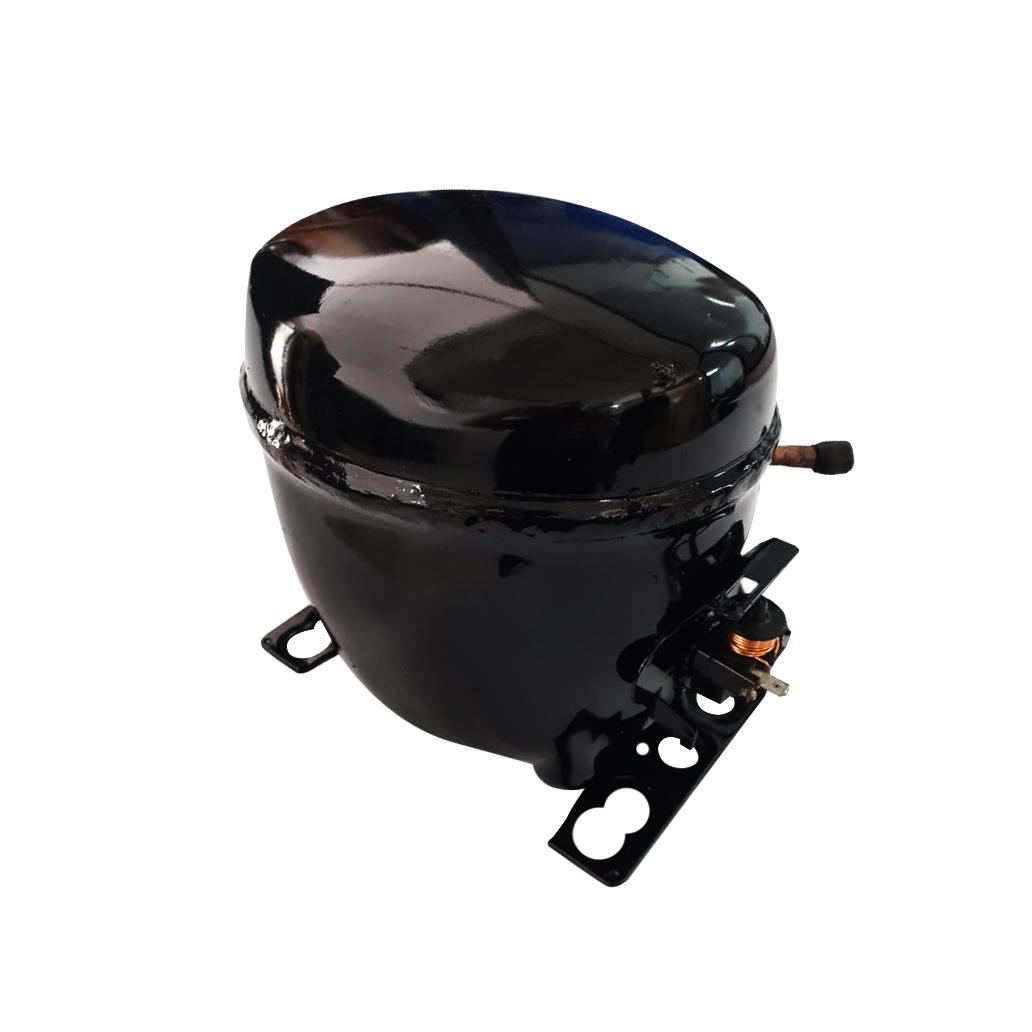 Compressor 1/3 R134 110v